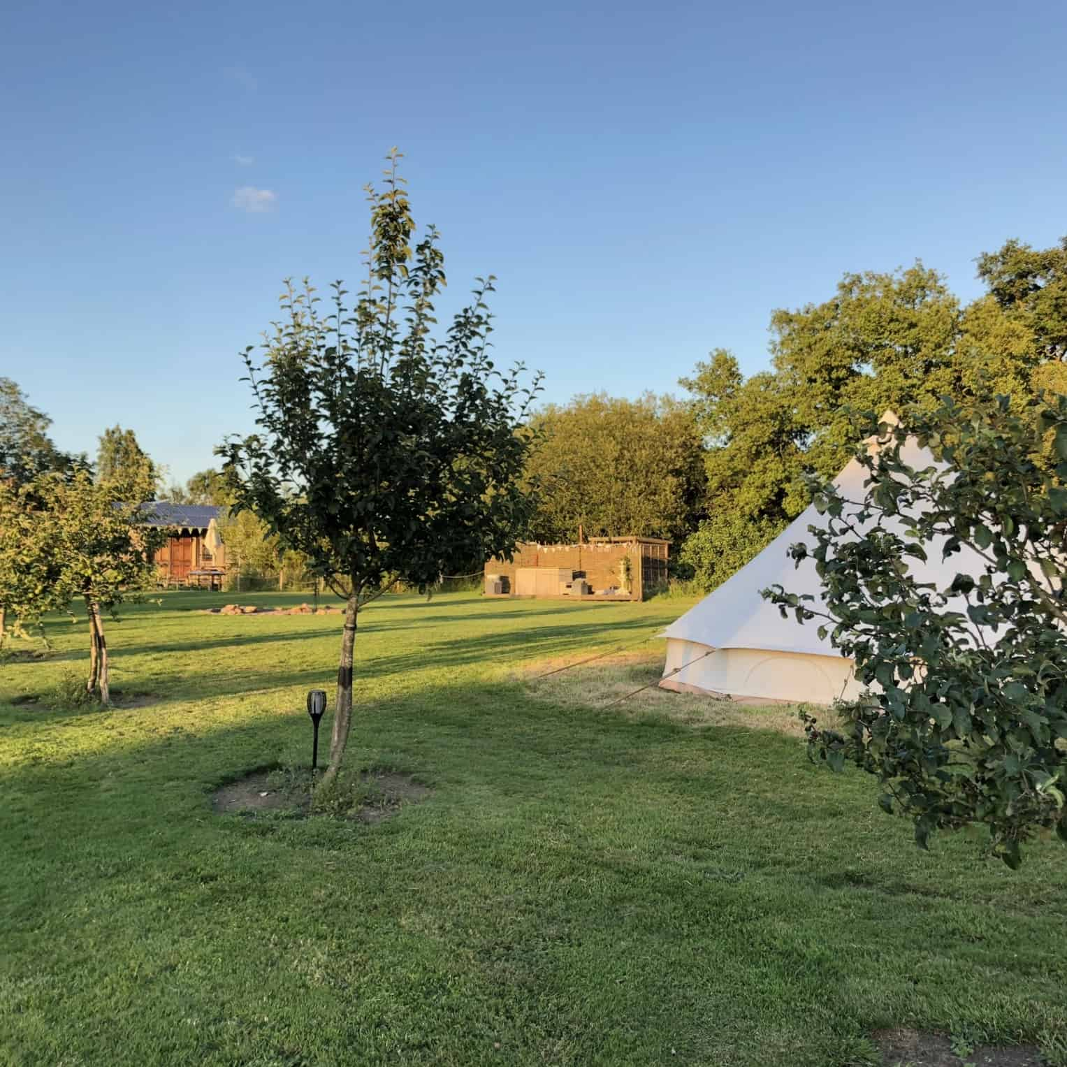 bell tent with trees