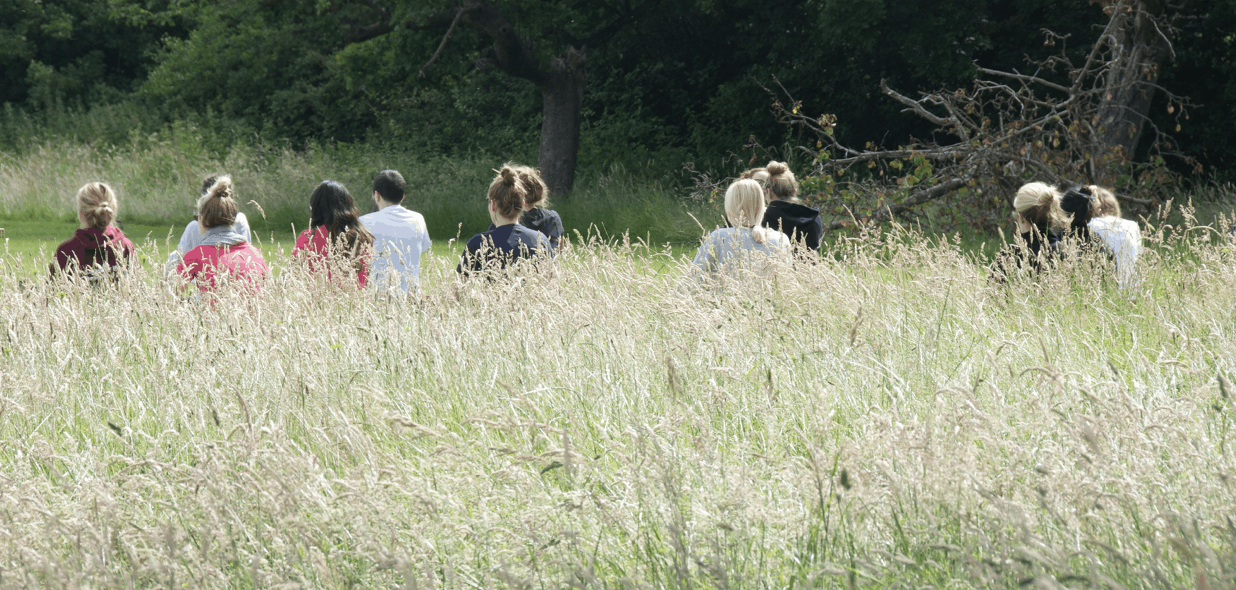 yoga sessions in the kent countryside